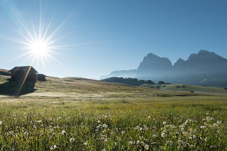 Summer at the Seiser Alm in Val Gardena