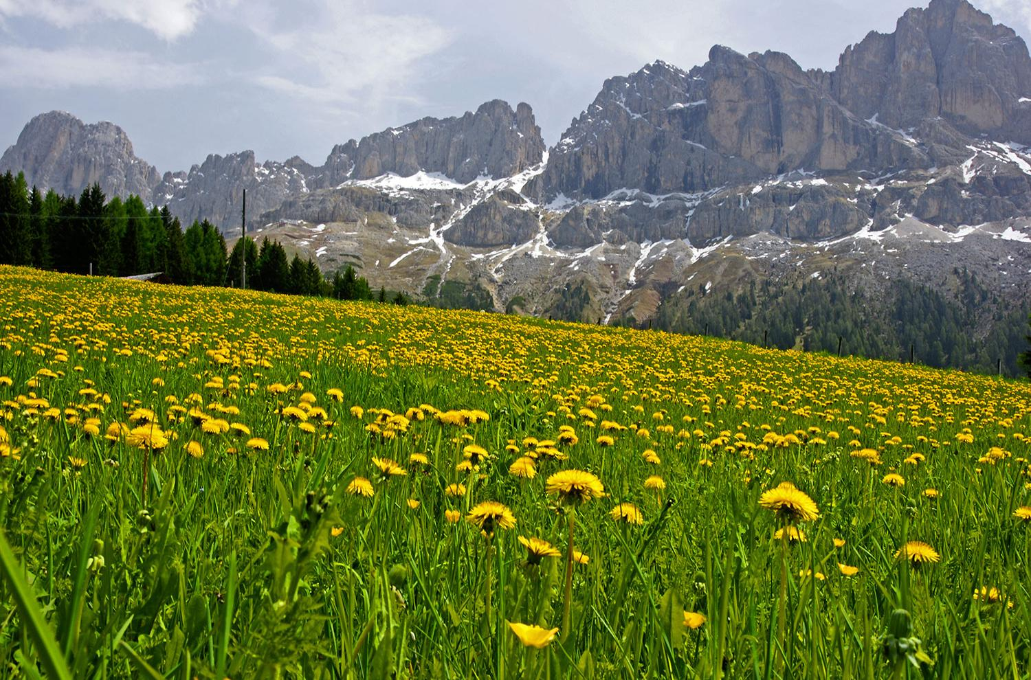 Holidays in Val Gardena – the heart of the Dolomites